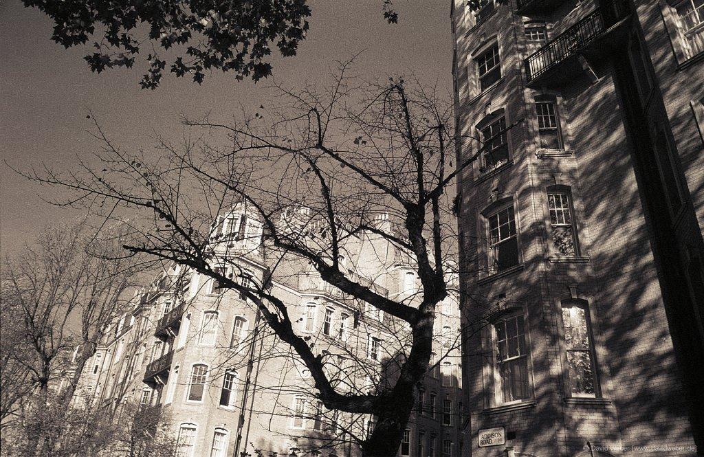 London-1989-01-0007.jpg