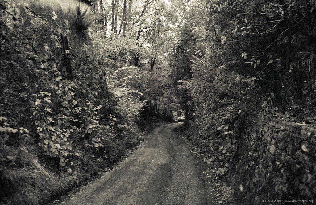 Kochelsee-2004-0033.jpg