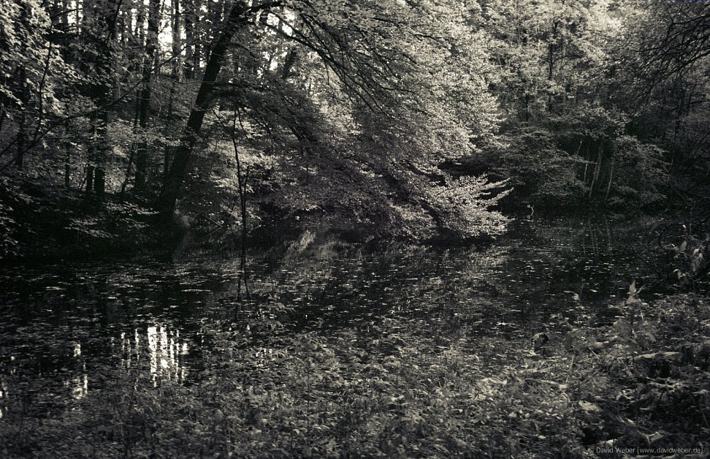 Mangfall-2004-0022.jpg